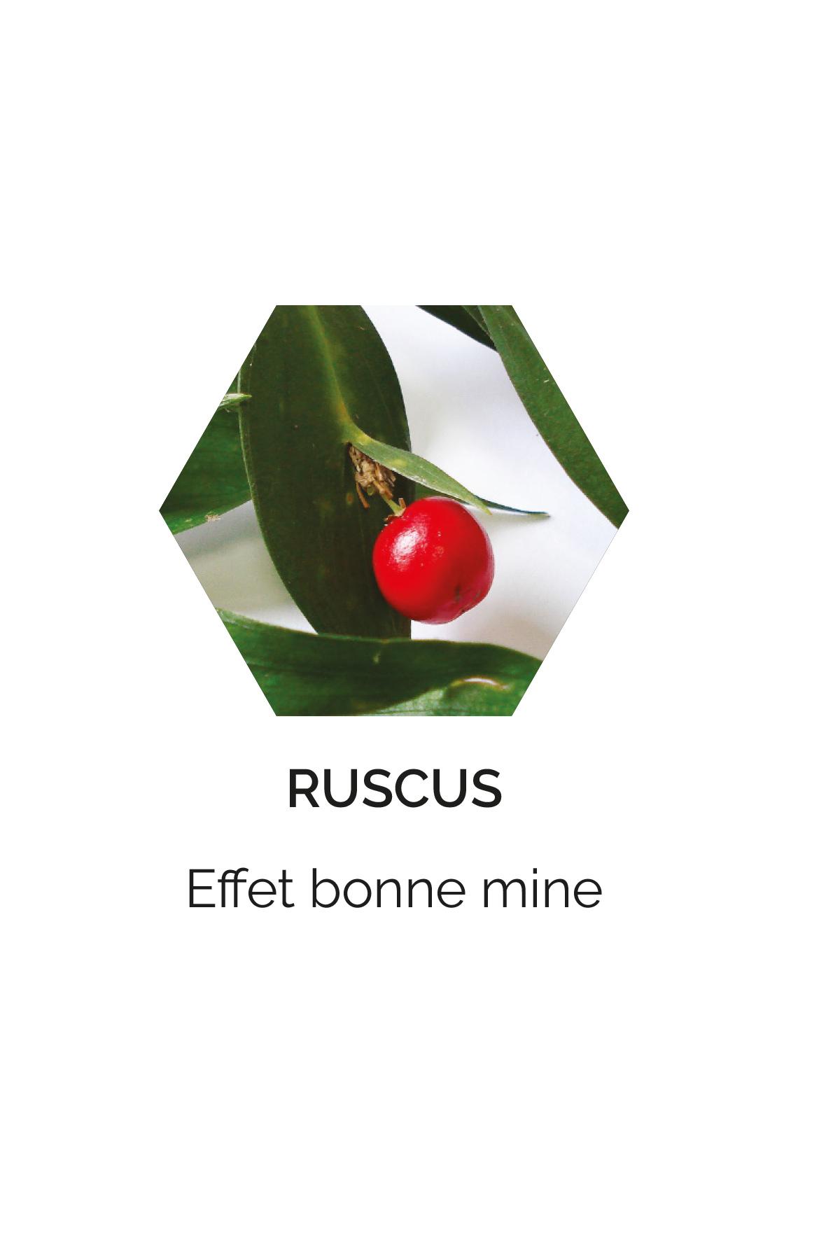 Ruscus